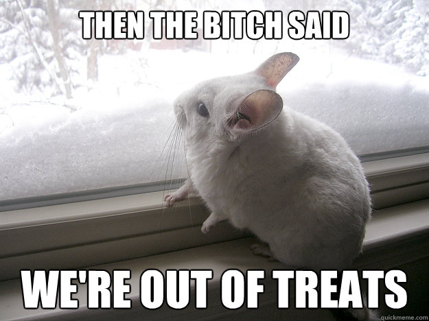 then the bitch said we're out of treats  lonely chinchilla