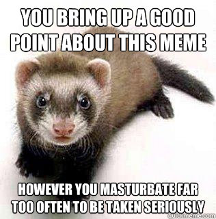 You bring up a good point about this meme however you masturbate far too often to be taken seriously    Logical Fallacy Ferret
