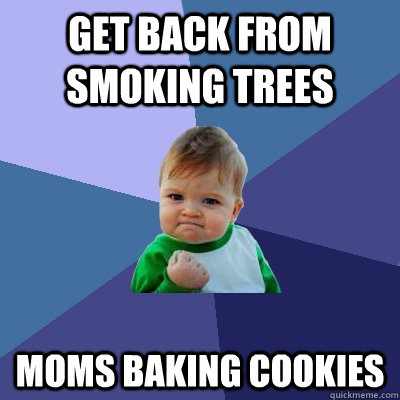 Get back from smoking trees moms baking cookies - Get back from smoking trees moms baking cookies  Success Kid