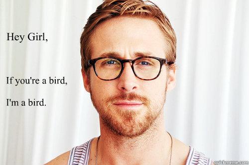 Hey Girl,  If you're a bird,   I'm a bird.