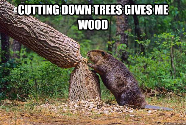 cutting down trees gives me wood beaver cutting trees Frog Puns