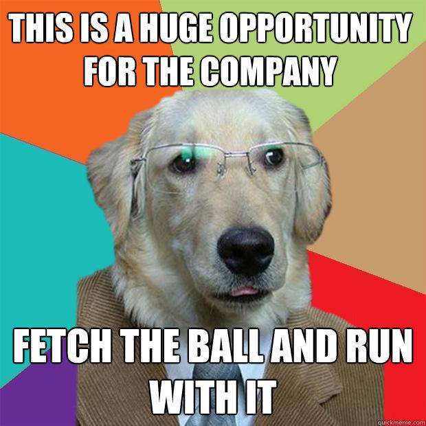 This is a huge opportunity for the company fetch the ball and run with it - This is a huge opportunity for the company fetch the ball and run with it  Business Dog