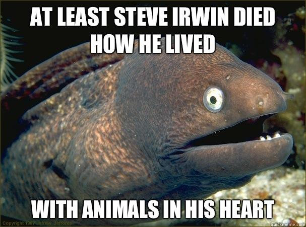 At least Steve Irwin died how he lived With animals in his heart - At least Steve Irwin died how he lived With animals in his heart  Bad Joke Eel