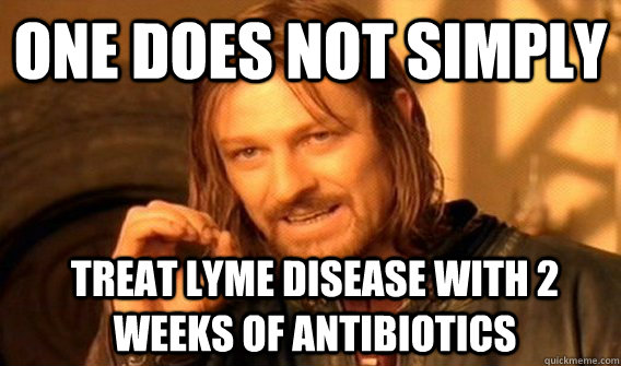 One does not simply treat Lyme disease with 2 weeks of antibiotics - One does not simply treat Lyme disease with 2 weeks of antibiotics  Boromir