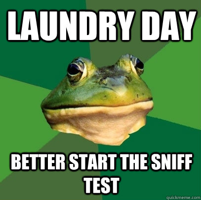 Laundry day better start the sniff test  - Laundry day better start the sniff test   Foul Bachelor Frog