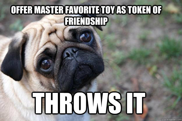 Offer master favorite toy as token of friendship Throws it  First World Dog problems
