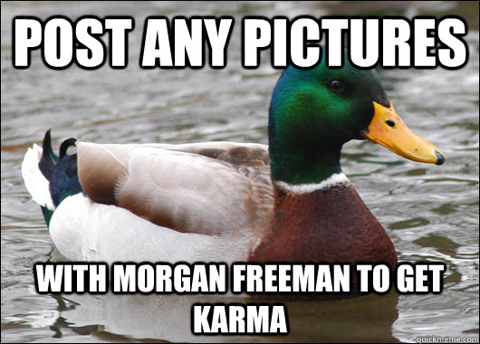 post any pictures with morgan freeman to get karma - post any pictures with morgan freeman to get karma  Actual Advice Mallard