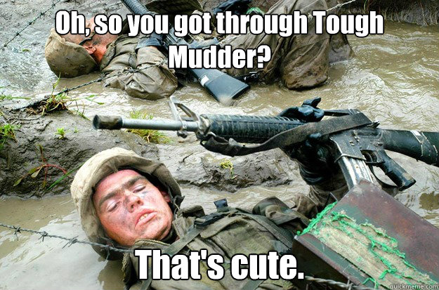 Cute marine pictures