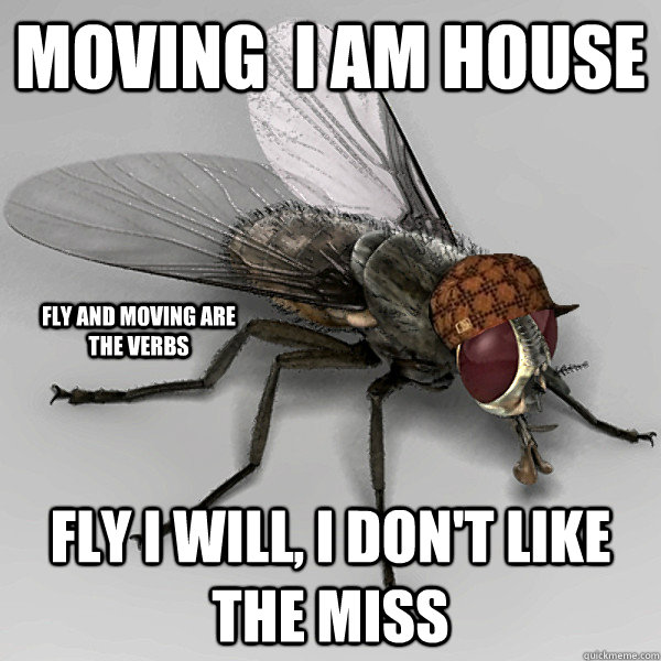 moving  i am house   fly i will, i don't like the miss fly and moving are the verbs - moving  i am house   fly i will, i don't like the miss fly and moving are the verbs  Scumbag Fly
