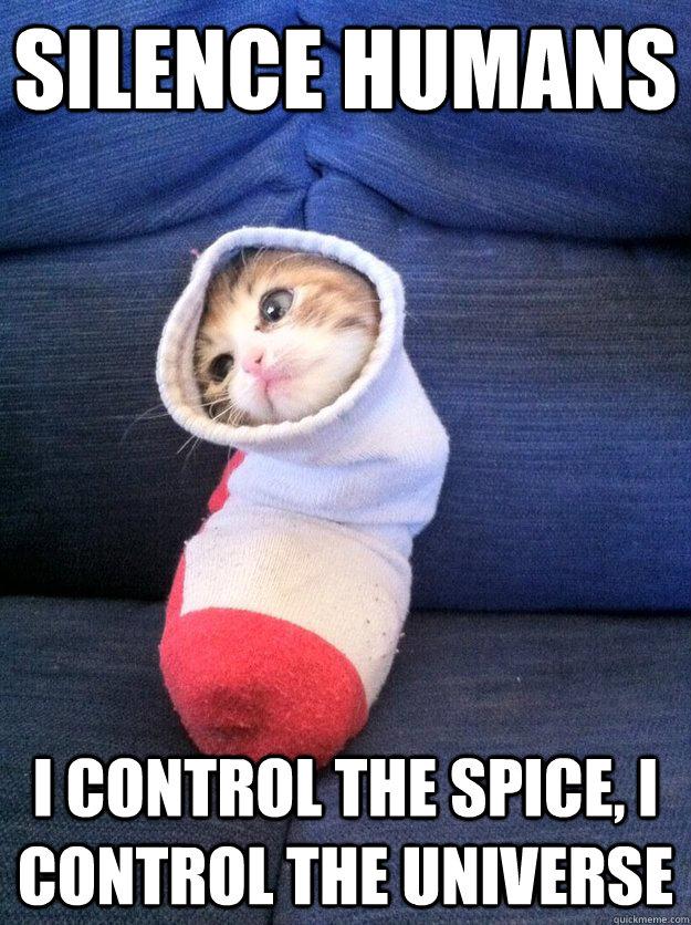 Silence humans I control the spice, I control the universe - Silence humans I control the spice, I control the universe  Sock Kitty