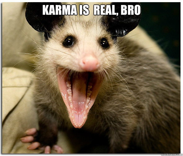 karma is  real, bro   Over-Excited Possum