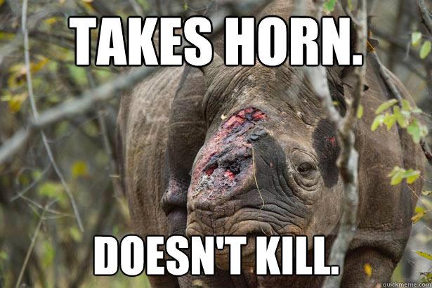 Takes horn. Doesn't kill. - Takes horn. Doesn't kill.  wtf rhino