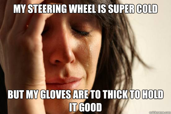 my steering wheel is super cold but my gloves are to thick to hold it good - my steering wheel is super cold but my gloves are to thick to hold it good  First World Problems