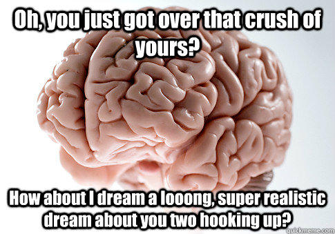 Oh, you just got over that crush of yours? How about I dream a looong, super realistic dream about you two hooking up?  - Oh, you just got over that crush of yours? How about I dream a looong, super realistic dream about you two hooking up?   Scumbag Brain