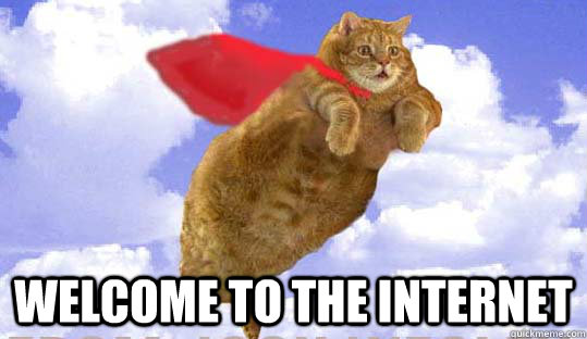 b66ccdeb9f2482ed4286e80c7dee3db2ccfbbed9d9b66482ef1eccf2d33cbe5c welcome to the internet fat flying cat quickmeme
