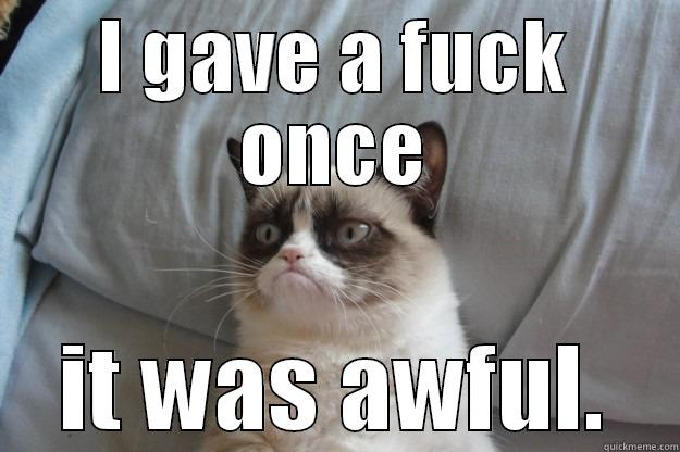 don't give a fuck - I GAVE A FUCK ONCE IT WAS AWFUL. Grumpy Cat