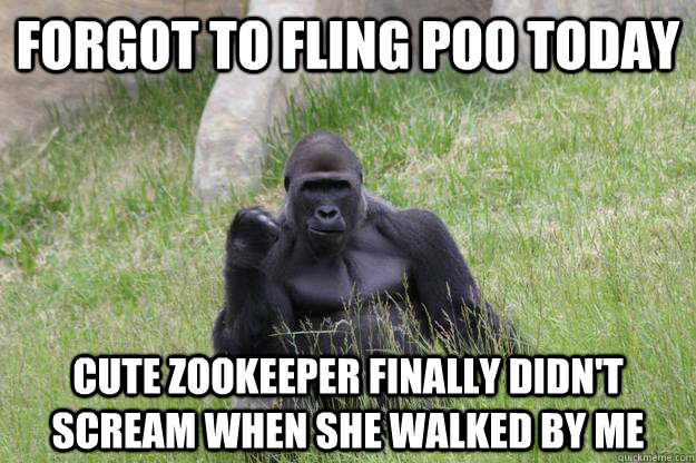 Forgot To Fling Poo Today Cute Zookeeper Finally Didn't Scream When She Walked By Me  Success Gorilla