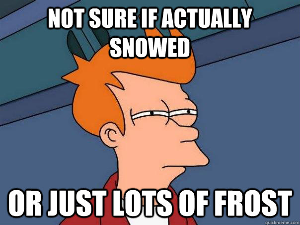 Not sure if actually snowed Or just lots of frost - Not sure if actually snowed Or just lots of frost  Futurama Fry
