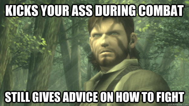 Kicks your ass during combat Still gives advice on how to fight - Kicks your ass during combat Still gives advice on how to fight  Misc