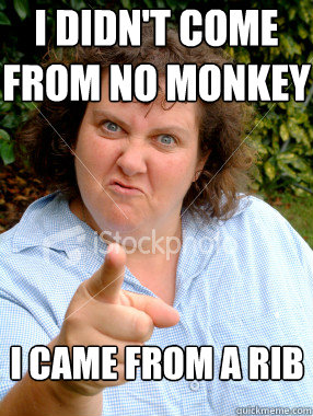 I didn't come from no monkey I came from a rib