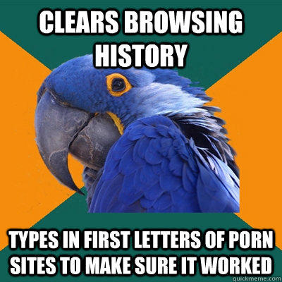 clears browsing history types in first letters of porn sites to make sure it worked - clears browsing history types in first letters of porn sites to make sure it worked  Paranoid Parrot