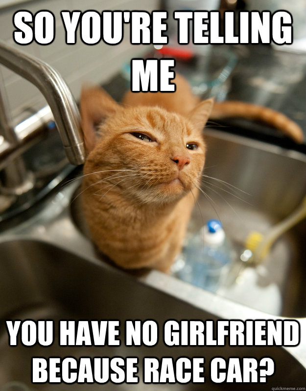 So you're telling me You have no girlfriend because race car?  Skeptical cat