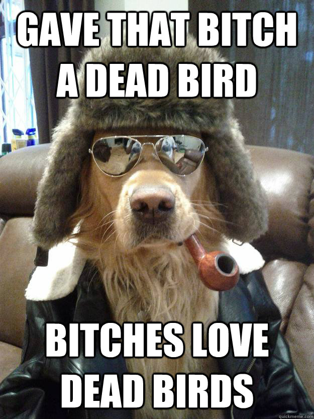 Gave that bitch a dead bird Bitches love dead birds - Gave that bitch a dead bird Bitches love dead birds  Overly Suave Dog