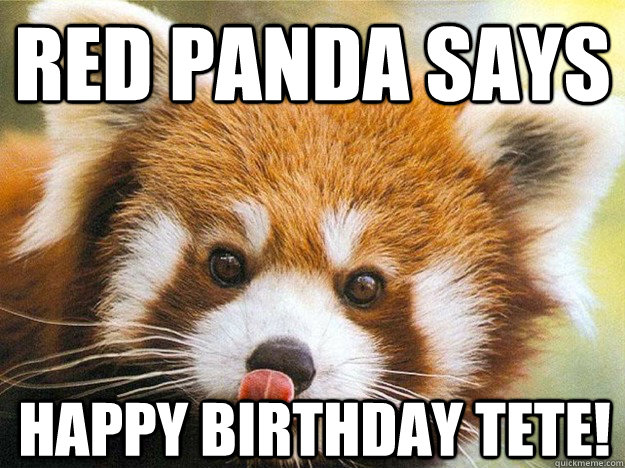Red Panda says Happy Birthday TETE!