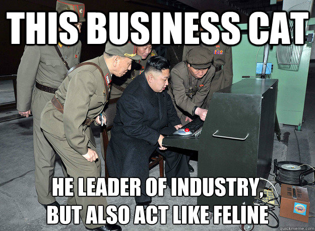 this business cat he leader of industry,  but also act like feline - this business cat he leader of industry,  but also act like feline  kim jong un
