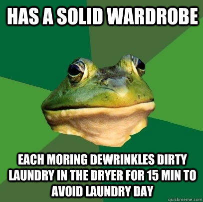 HAS A SOLID WARDROBE EACH MORING DEWRINKlEs DIRTY LAUNDRY IN THE DRYER FOR 15 MIN TO AVOID LAunDRY DAY - HAS A SOLID WARDROBE EACH MORING DEWRINKlEs DIRTY LAUNDRY IN THE DRYER FOR 15 MIN TO AVOID LAunDRY DAY  Foul Bachelor Frog