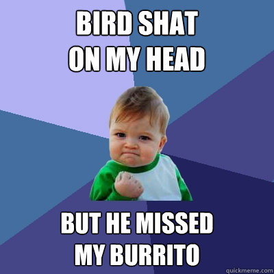 Bird shat  on my head but he missed  my burrito - Bird shat  on my head but he missed  my burrito  Success Kid