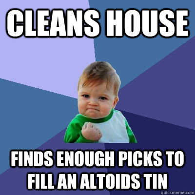 Cleans house Finds enough picks to fill an altoids tin - Cleans house Finds enough picks to fill an altoids tin  Success Kid