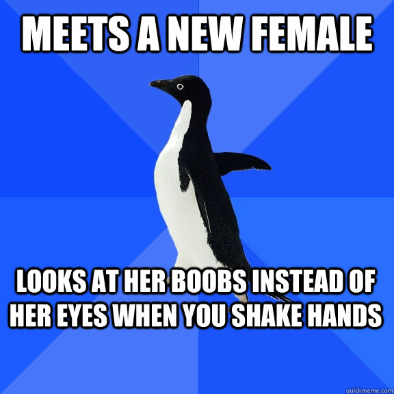Meets a new Female Looks at her boobs instead of her eyes when you shake hands   - Meets a new Female Looks at her boobs instead of her eyes when you shake hands    Socially Awkward Penguin