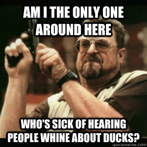 Am i the only one around here Who's sick of hearing people whine about ducks? - Am i the only one around here Who's sick of hearing people whine about ducks?  Am I The Only One Round Here