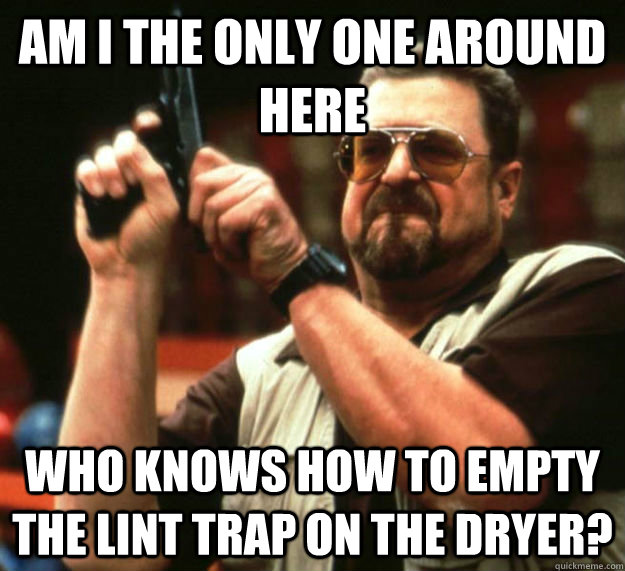 AM I THE ONLY ONE AROUND HERE WHO KNOWS HOW TO EMPTY THE LINT TRAP ON THE DRYER? - AM I THE ONLY ONE AROUND HERE WHO KNOWS HOW TO EMPTY THE LINT TRAP ON THE DRYER?  Am I the only one around here1