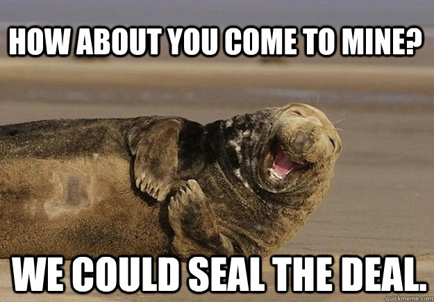 How about you come to mine? We could seal the deal. - How about you come to mine? We could seal the deal.  Sea Lion Brian