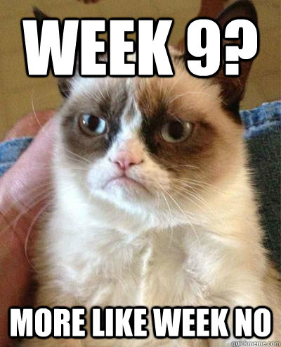 Week 9? more like week no - Week 9? more like week no  Week 9 Angry Cat