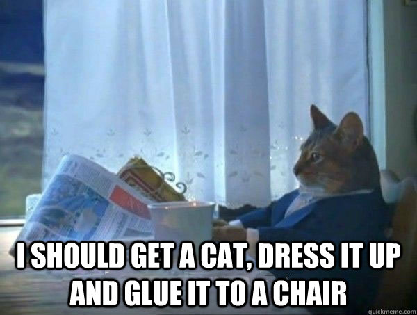 I should get a cat, dress it up and glue it to a chair -  I should get a cat, dress it up and glue it to a chair  Misc