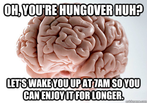 Oh, you're hungover huh? Let's wake you up at 7am so you can enjoy it for longer. - Oh, you're hungover huh? Let's wake you up at 7am so you can enjoy it for longer.  Scumbag Brain