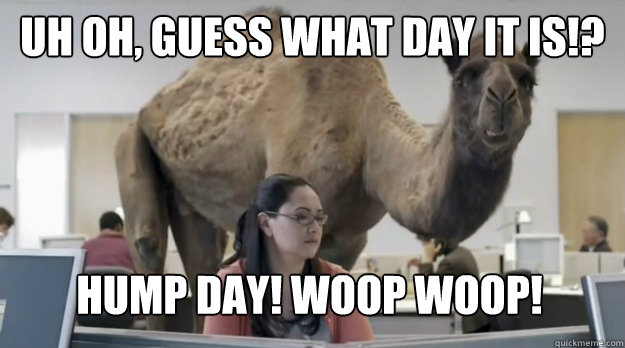 Uh oh, guess what day it is!? hump day! woop woop!