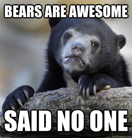 bears are awesome  said no one - bears are awesome  said no one  Confession Bear