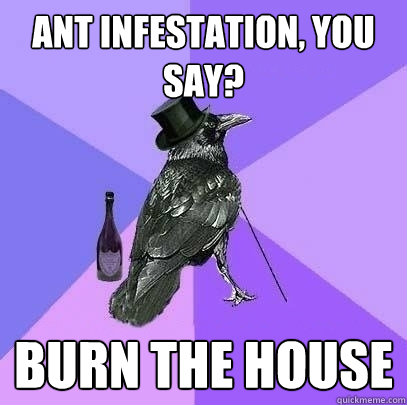 ant infestation, you say? burn the house - ant infestation, you say? burn the house  Rich Raven