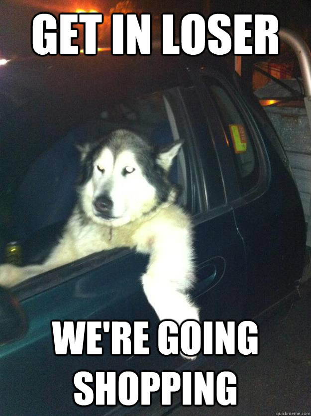 Get In Loser Were Going Shopping Mean Dog Quickmeme
