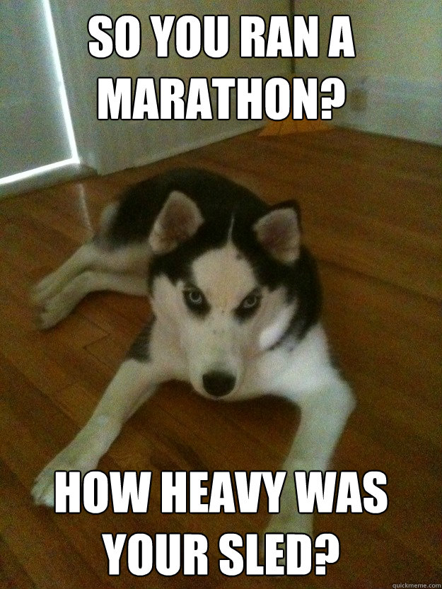 so you ran a marathon? how heavy was your sled? - so you ran a marathon? how heavy was your sled?  Scumbag Husky
