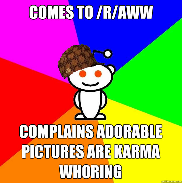 Comes to /r/aww complains adorable pictures are karma whoring - Comes to /r/aww complains adorable pictures are karma whoring  Scumbag Redditor