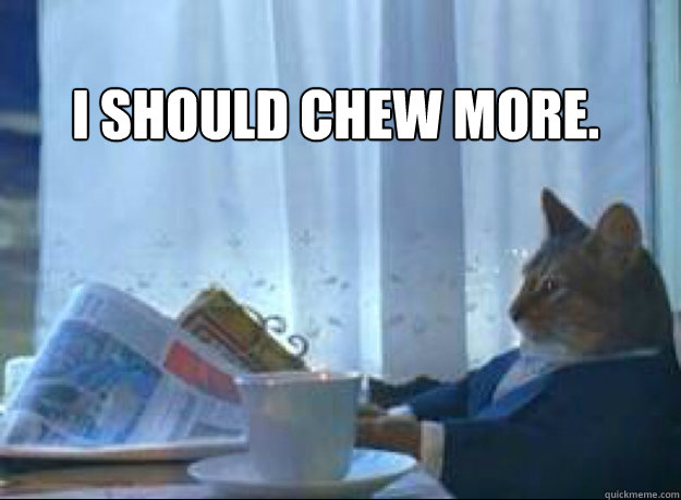 I should chew more.   - I should chew more.    I should buy a boat cat