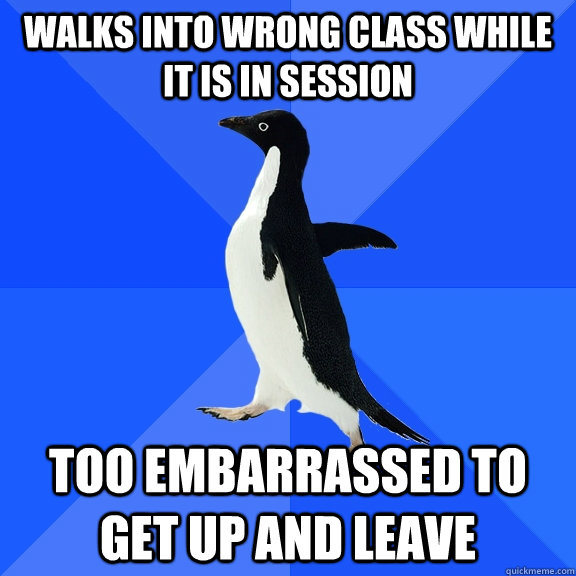 Walks into wrong class while it is in session too embarrassed to get up and leave - Walks into wrong class while it is in session too embarrassed to get up and leave  Socially Awkward Penguin