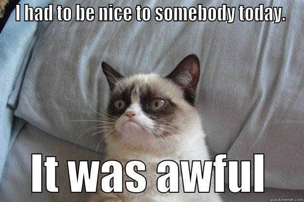 I HAD TO BE NICE TO SOMEBODY TODAY. IT WAS AWFUL Grumpy Cat