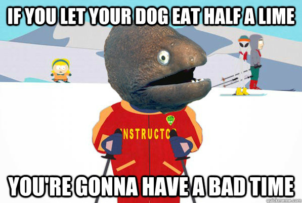 If you let your dog eat half a lime you're gonna have a bad time
