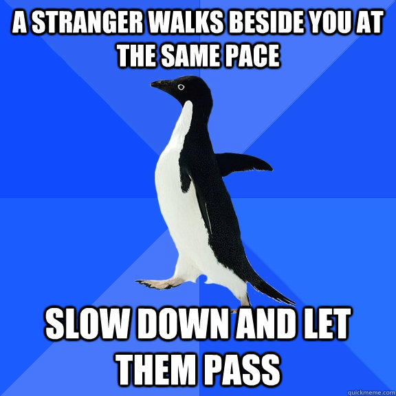 A stranger walks beside you at the same pace Slow down and let them pass - A stranger walks beside you at the same pace Slow down and let them pass  Socially Awkward Penguin